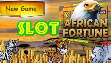 the new african fortune slot